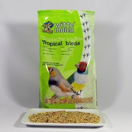 COUNTRY TROPICALES 1 KG